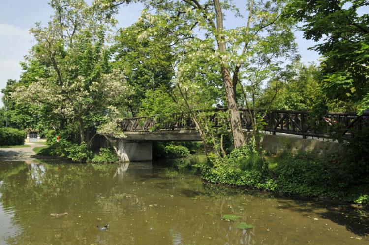 La Ville investit pour l'entretien des lacs et rivières du Vésinet
