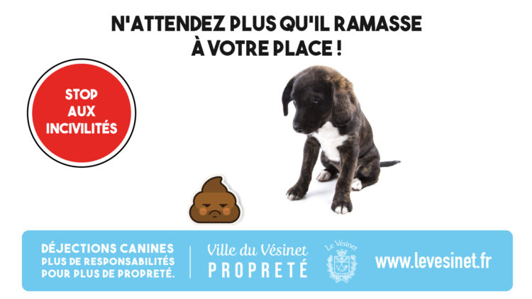 La ville s'engage à vos côtés contre les déjections canines