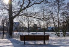 Le Vésinet sous la neige