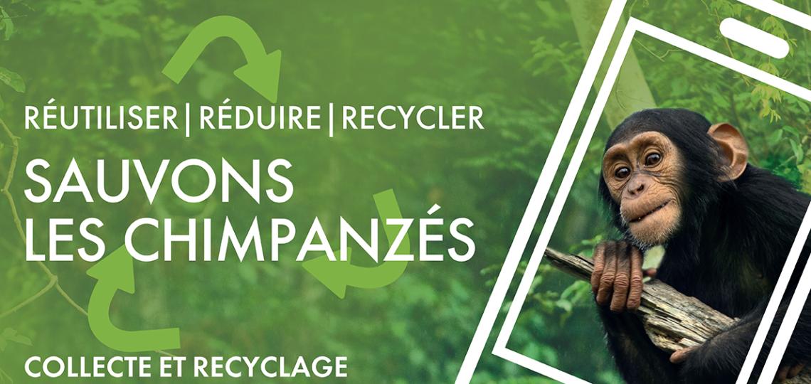 Recyclons nos téléphones portables pour protéger les forêts !