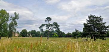 La ville redouble d'effort pour la tonte des pelouses et banquettes anglaises